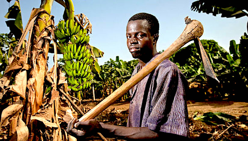 Innovative technologies for young agriculturalentrepreneurs