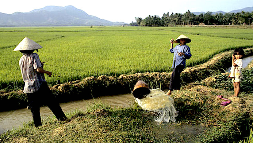 The increasing use of groundwater for irrigation poses a major threat to global food security