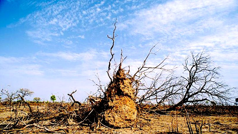 Subtropical dry areas are going to expand over large parts of the Earth as the climatewarms.