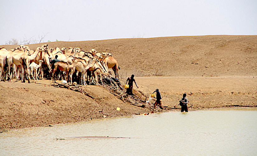 Investing in preparedness and building the resilience of farmers is fundamental to cope with extremedrought